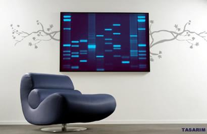 DNA Portre