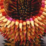 Birim olarak kalem kullanılan bu tasarımları yapmak uzun bir
