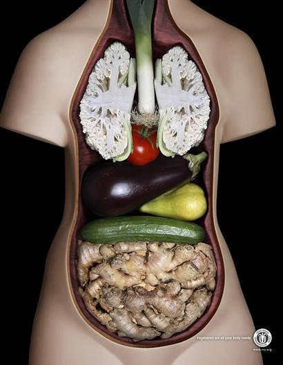 Sebzelerden İnsan Vücudu